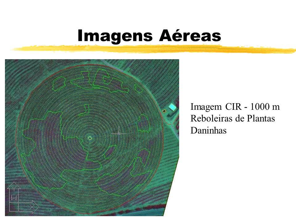 Imagens Aéreas Imagem CIR - 1000 m Reboleiras de Plantas Daninhas