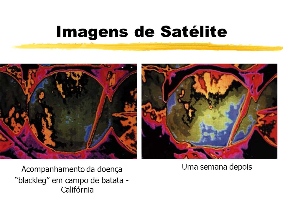 Imagens de Satélite Uma semana depois Acompanhamento da doença