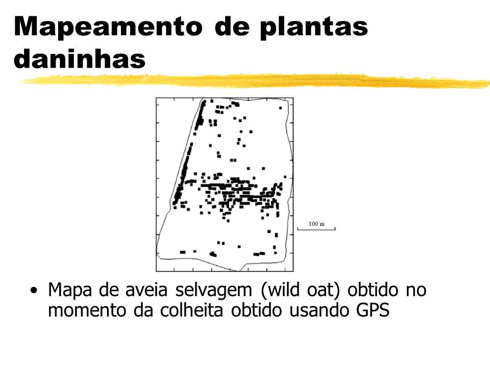 Mapeamento de plantas daninhas