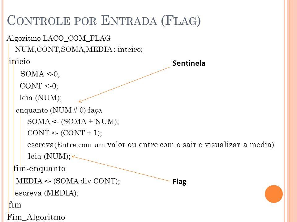 Controle por Entrada (Flag)