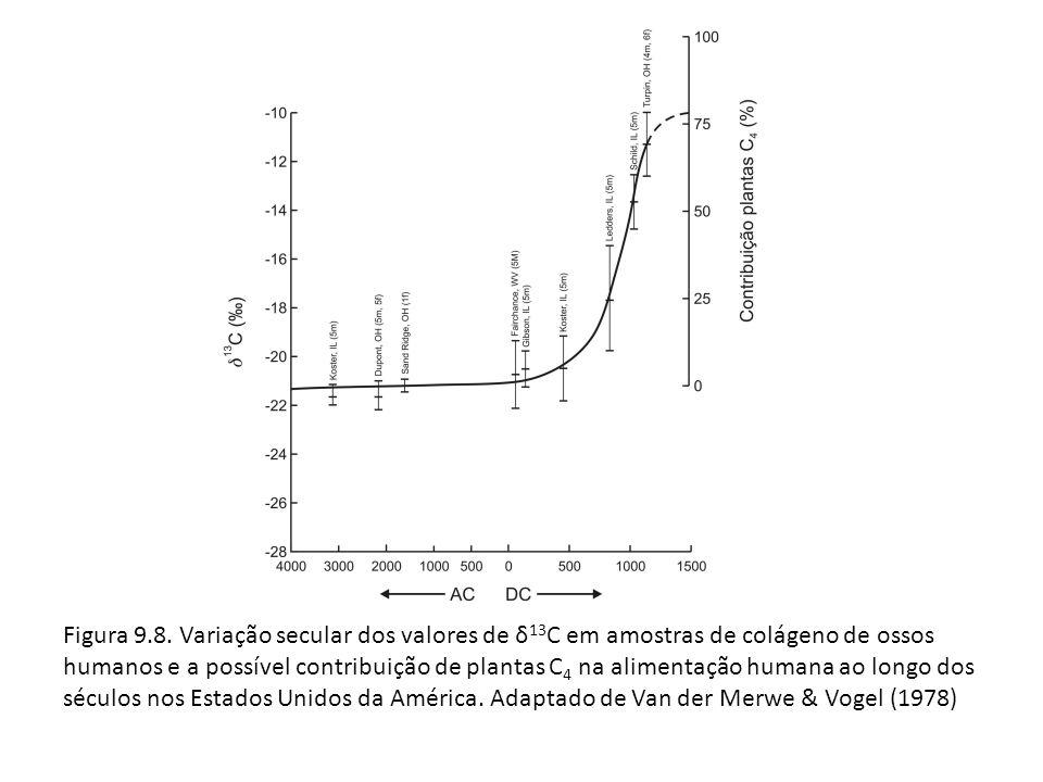 Figura 9.8.