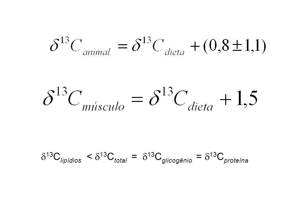 13Clipídios < 13Ctotal = 13Cglicogênio = 13Cproteína
