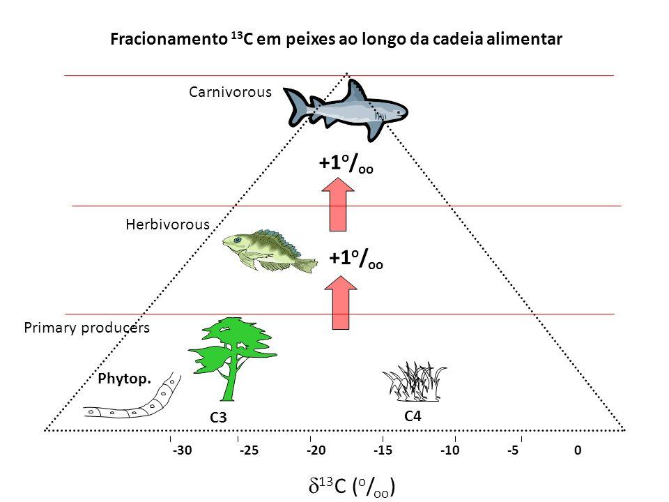 Fracionamento 13C em peixes ao longo da cadeia alimentar