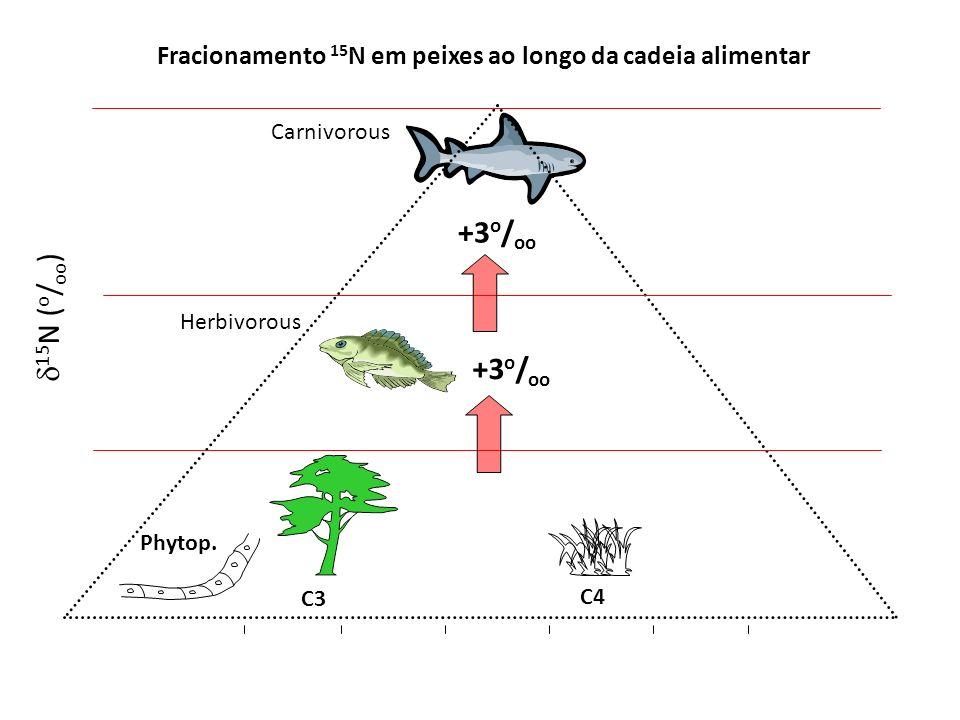 Fracionamento 15N em peixes ao longo da cadeia alimentar