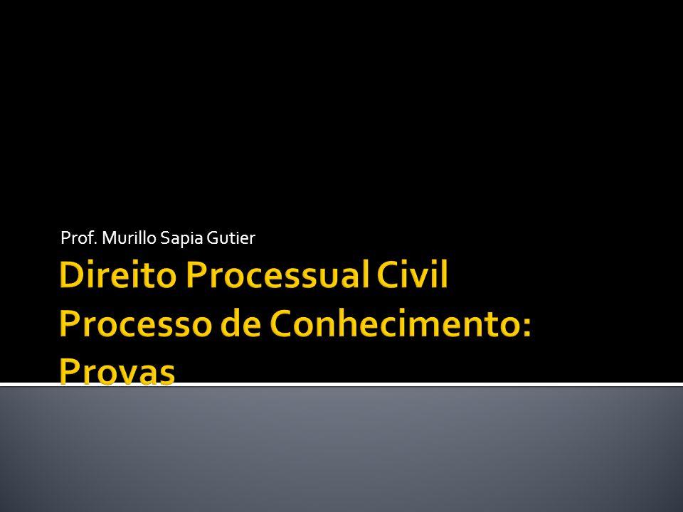 Direito Processual Civil Processo de Conhecimento: Provas