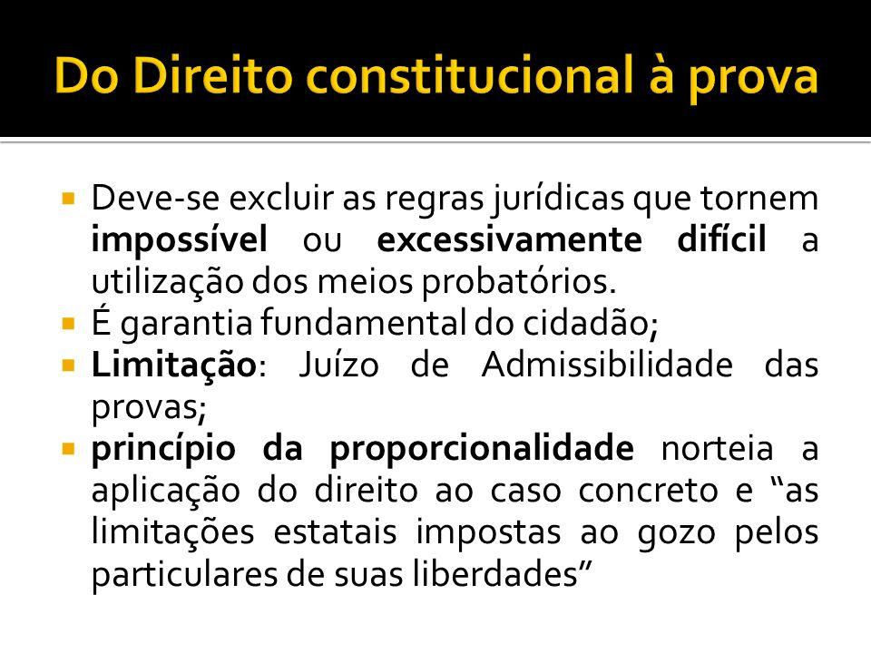 Do Direito constitucional à prova
