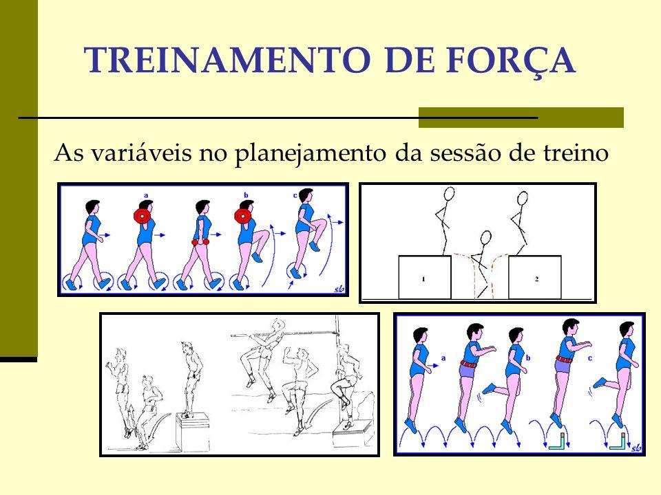 As variáveis no planejamento da sessão de treino