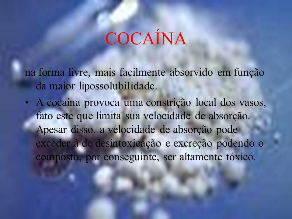 COCAÍNAna forma livre, mais facilmente absorvido em função da maior lipossolubilidade.