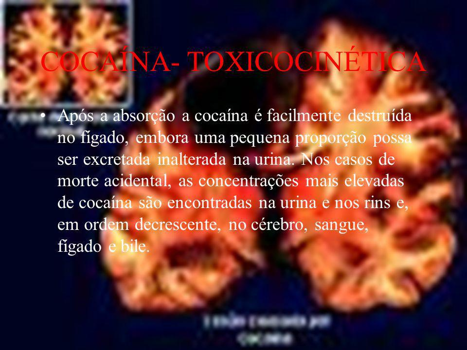 COCAÍNA- TOXICOCINÉTICA