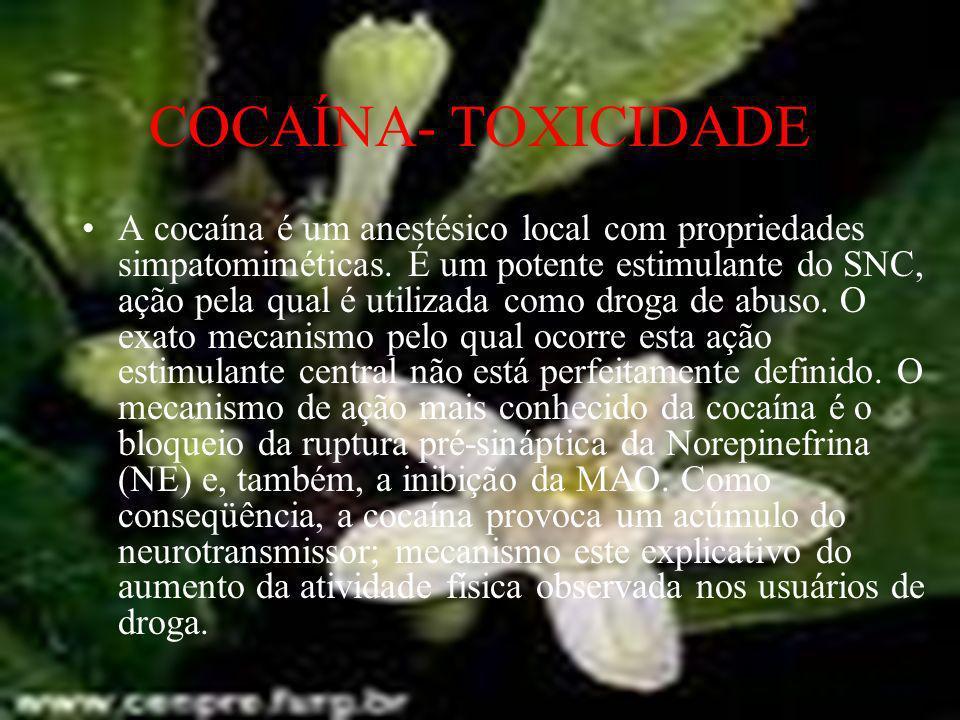 COCAÍNA- TOXICIDADE