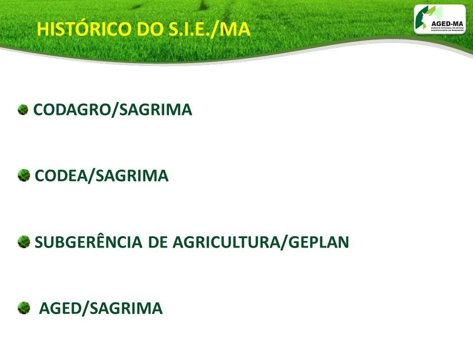 HISTÓRICO DO S.I.E./MA CODEA/SAGRIMA SUBGERÊNCIA DE AGRICULTURA/GEPLAN