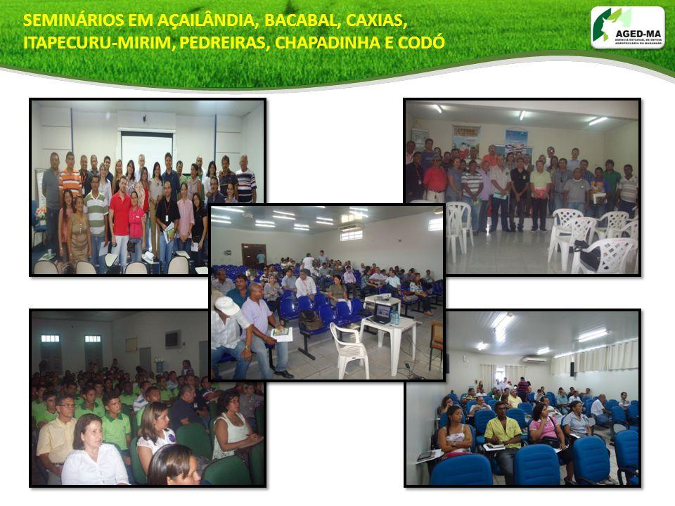 SEMINÁRIOS EM AÇAILÂNDIA, BACABAL, CAXIAS,