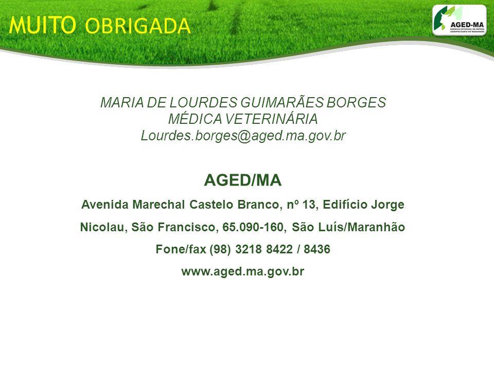 MUITO OBRIGADA AGED/MA MARIA DE LOURDES GUIMARÃES BORGES