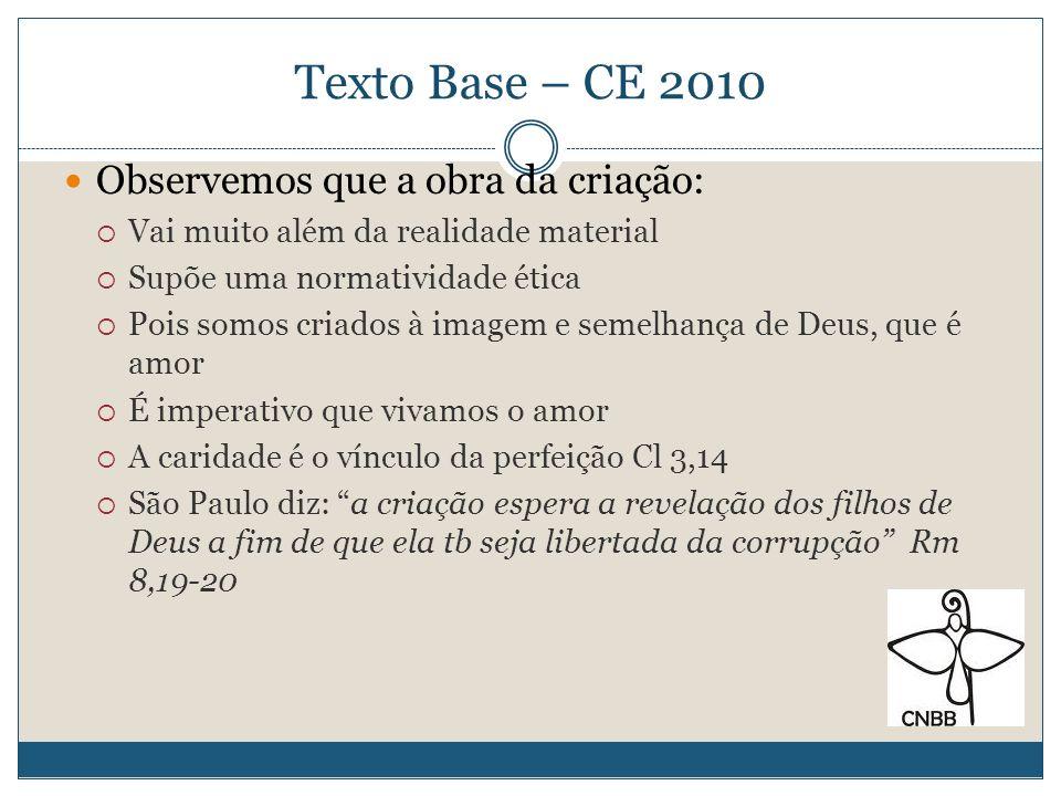 Texto Base – CE 2010 Observemos que a obra da criação: