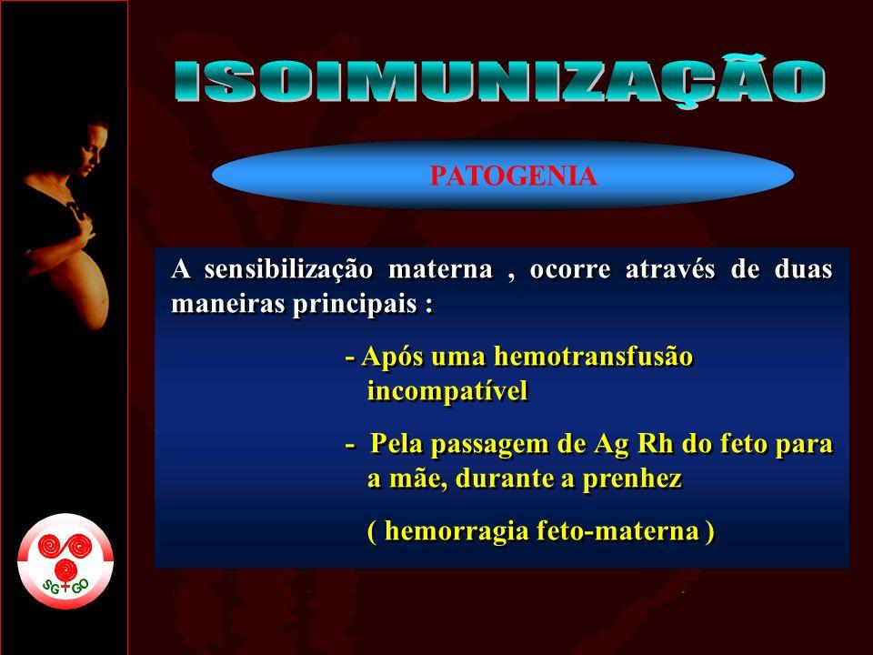 ISOIMUNIZAÇÃO PATOGENIA