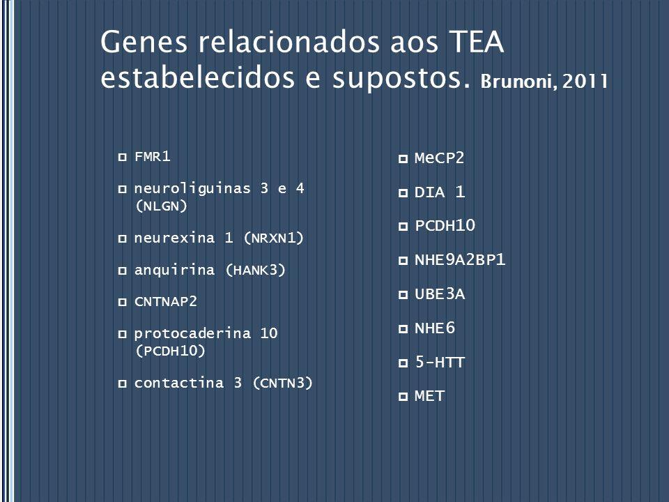 Genes relacionados aos TEA estabelecidos e supostos. Brunoni, 2011