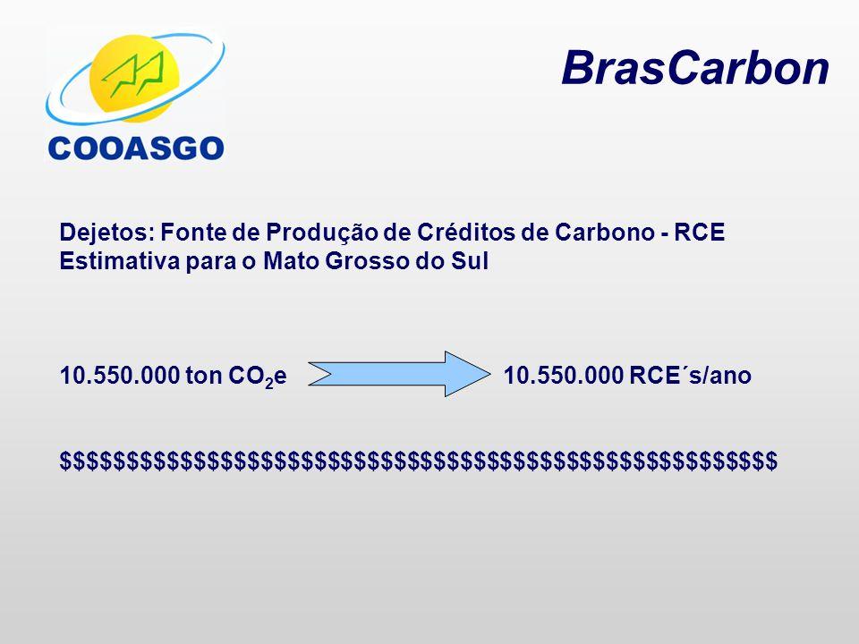 BrasCarbon Dejetos: Fonte de Produção de Créditos de Carbono - RCE