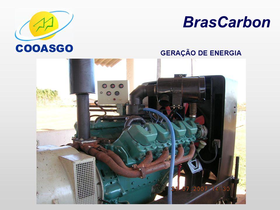 BrasCarbon GERAÇÃO DE ENERGIA