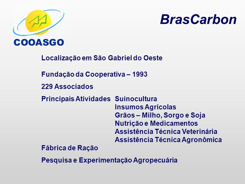 BrasCarbon Localização em São Gabriel do Oeste