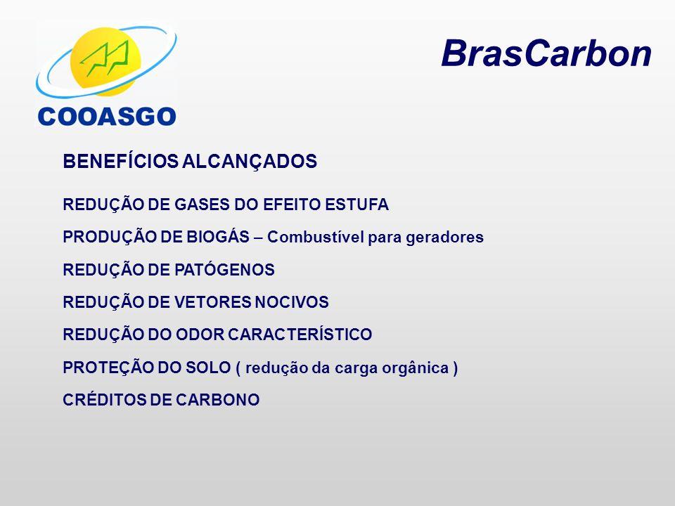 BrasCarbon BENEFÍCIOS ALCANÇADOS REDUÇÃO DE GASES DO EFEITO ESTUFA