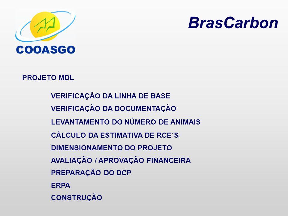 BrasCarbon PROJETO MDL VERIFICAÇÃO DA LINHA DE BASE