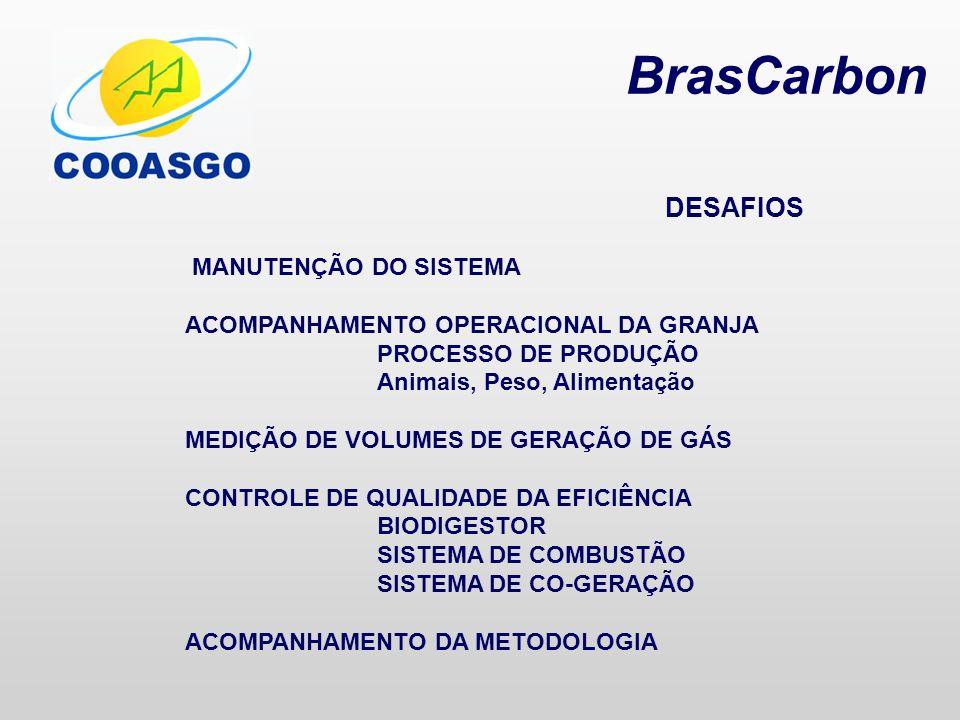 BrasCarbon DESAFIOS MANUTENÇÃO DO SISTEMA
