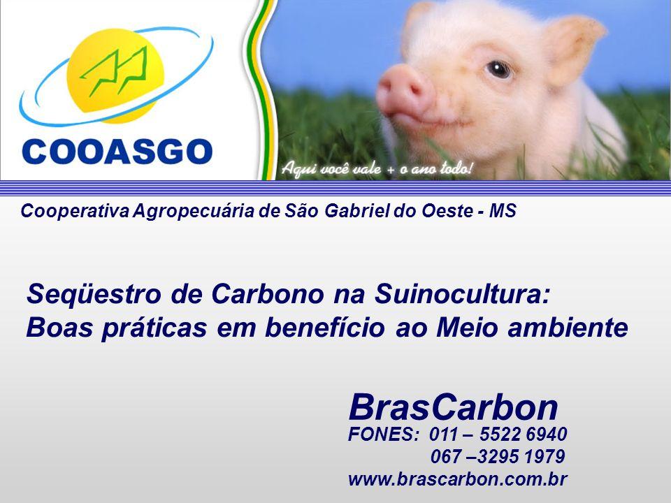 BrasCarbon Seqüestro de Carbono na Suinocultura: