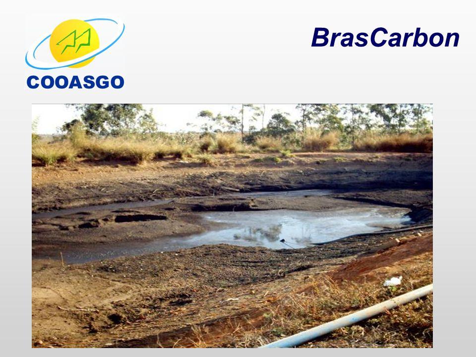 BrasCarbon