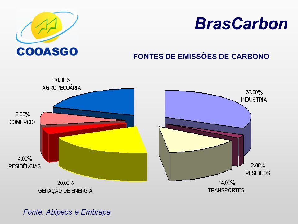 BrasCarbon FONTES DE EMISSÕES DE CARBONO Fonte: Abipecs e Embrapa