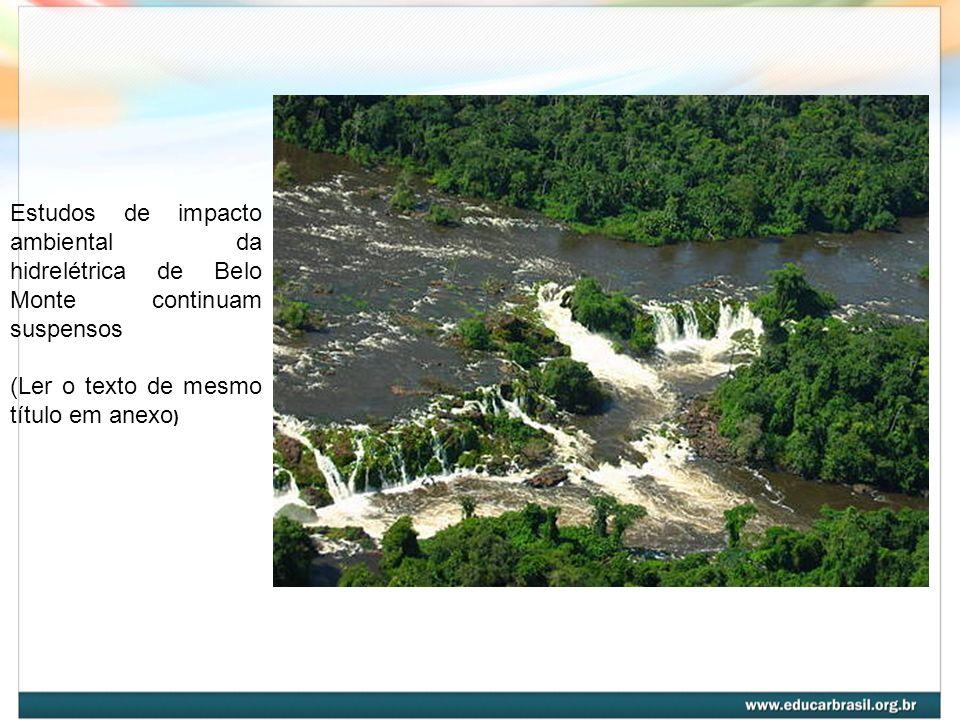 Estudos de impacto ambiental da hidrelétrica de Belo Monte continuam suspensos