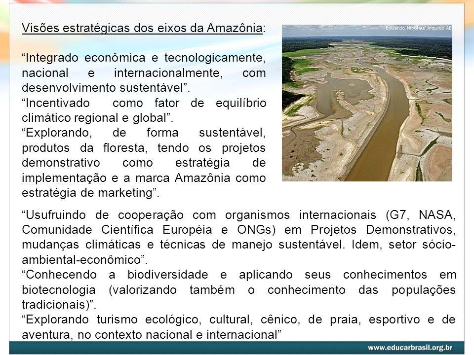 Visões estratégicas dos eixos da Amazônia: