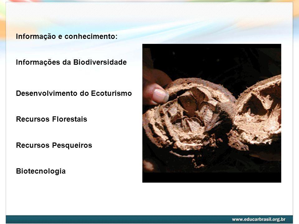 Informação e conhecimento: Informações da Biodiversidade. Desenvolvimento do Ecoturismo. Recursos Florestais.