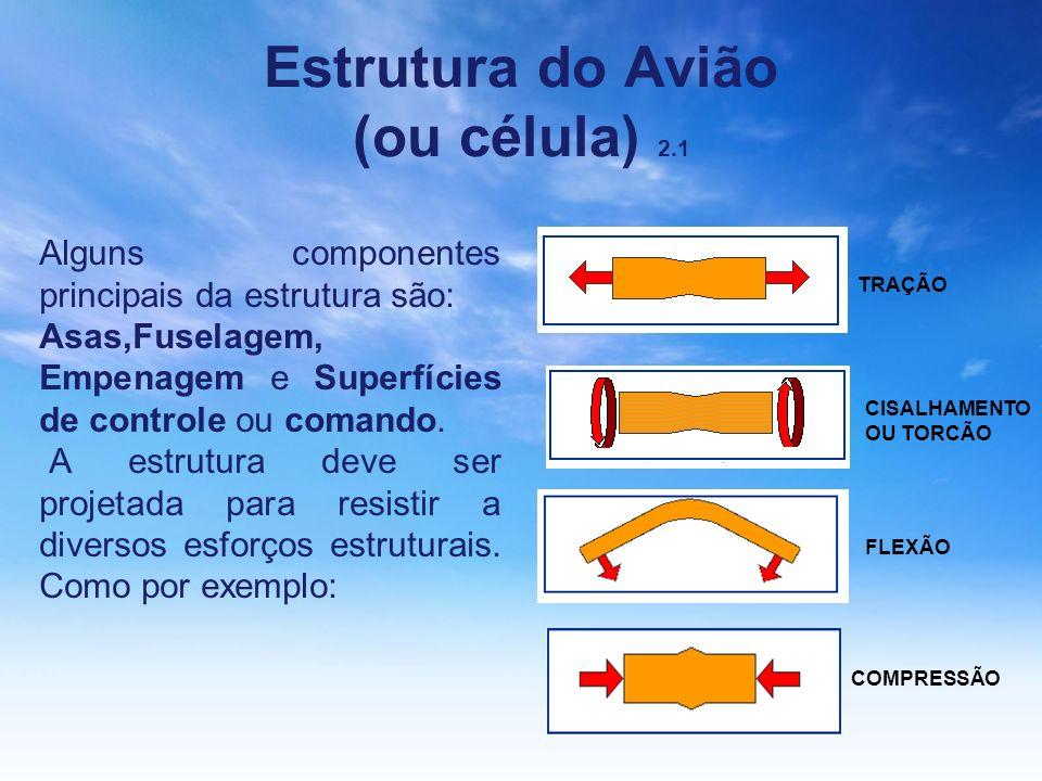 Estrutura do Avião (ou célula) 2.1