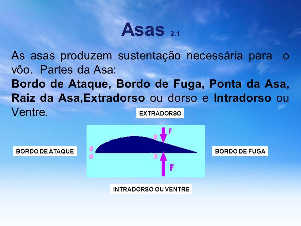 Asas 2.1As asas produzem sustentação necessária para o vôo. Partes da Asa: