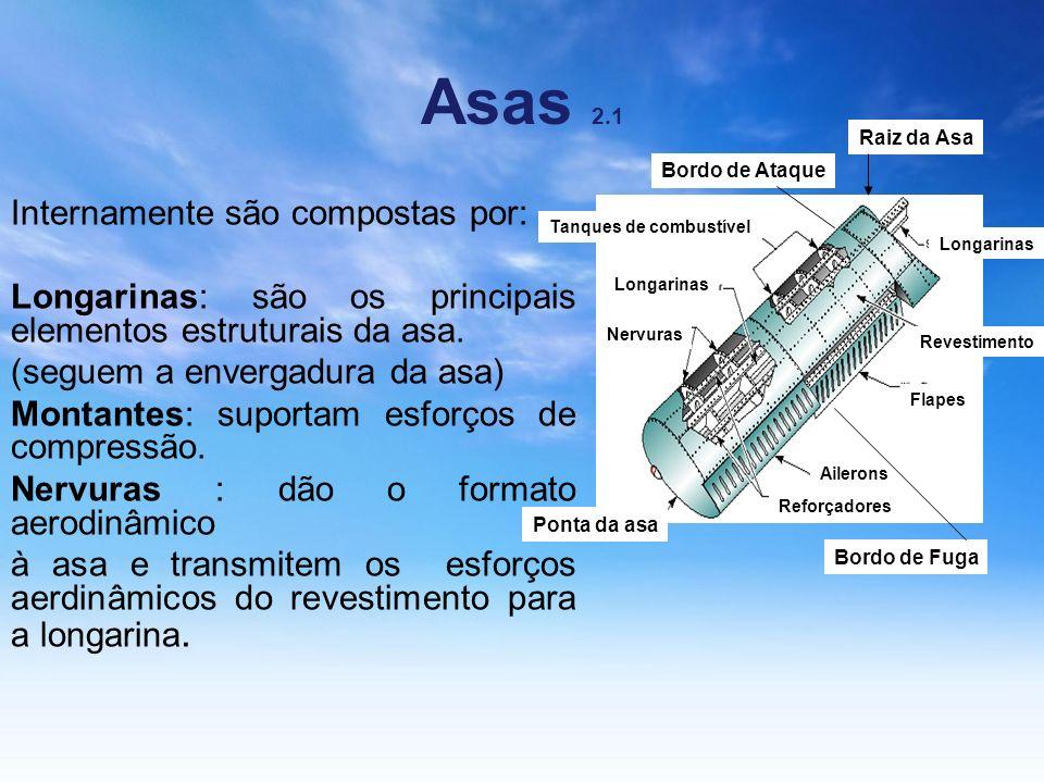Asas 2.1 Internamente são compostas por: