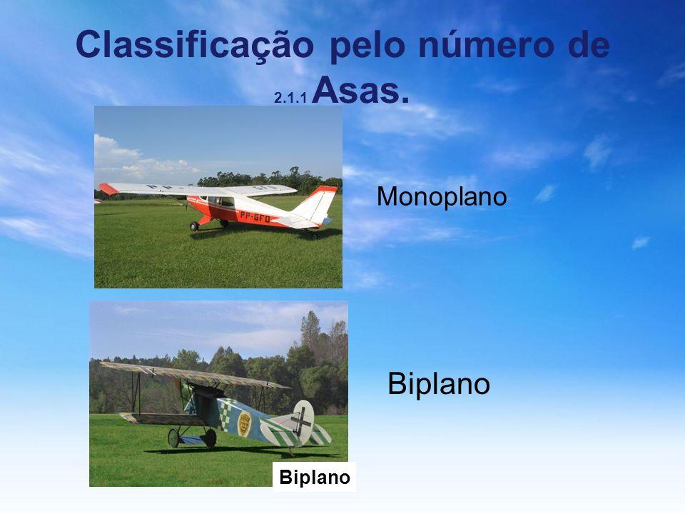 Classificação pelo número de 2.1.1 Asas.