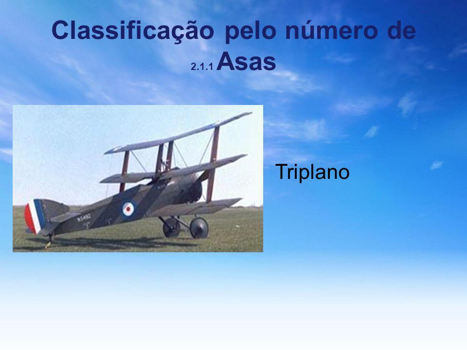 Classificação pelo número de 2.1.1 Asas