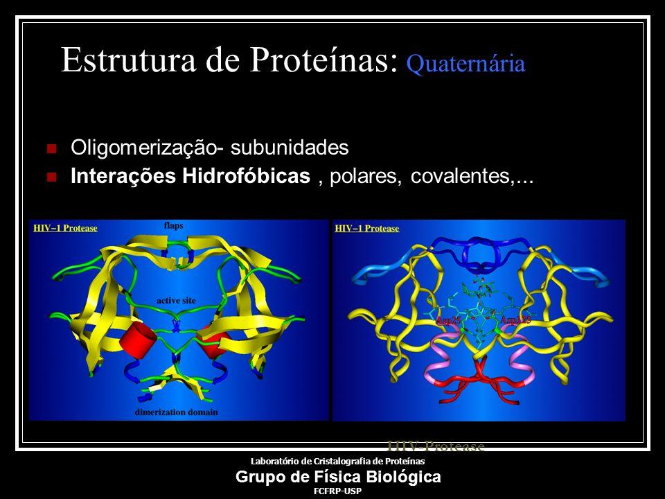 Estrutura de Proteínas: Quaternária