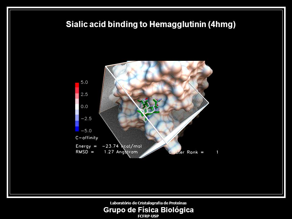 Laboratório de Cristalografia de Proteínas Grupo de Física Biológica