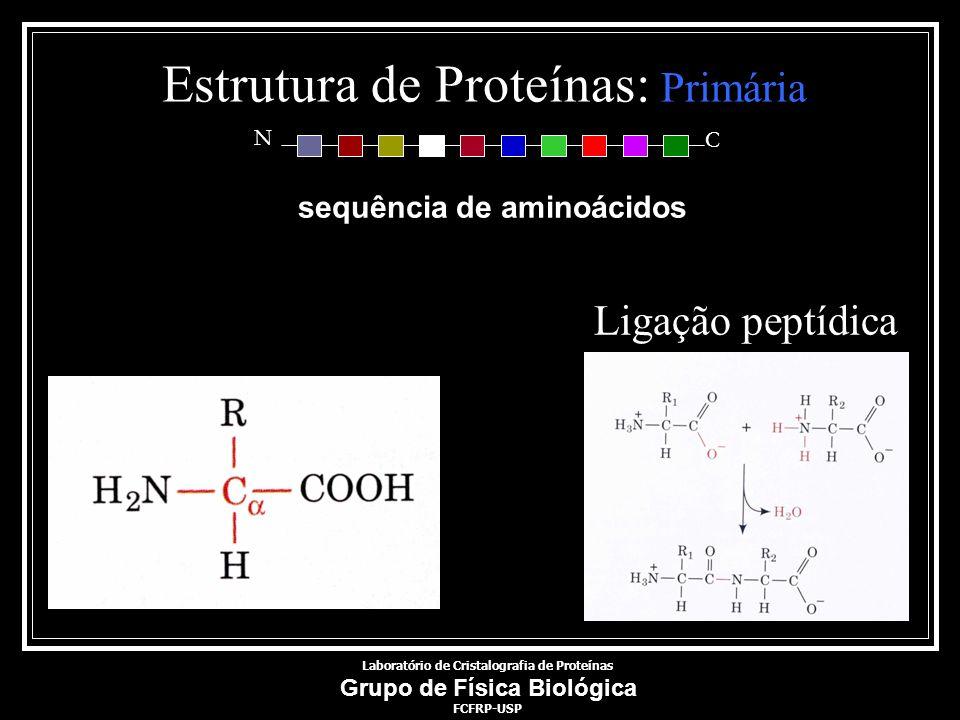 Estrutura de Proteínas: Primária