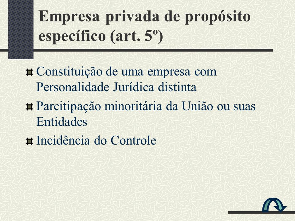 Empresa privada de propósito específico (art. 5º)