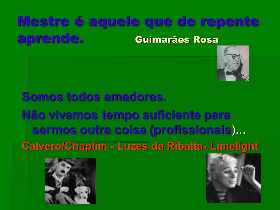 Mestre é aquele que de repente aprende. Guimarães Rosa