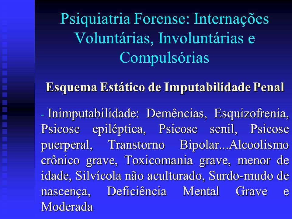 Esquema Estático de Imputabilidade Penal