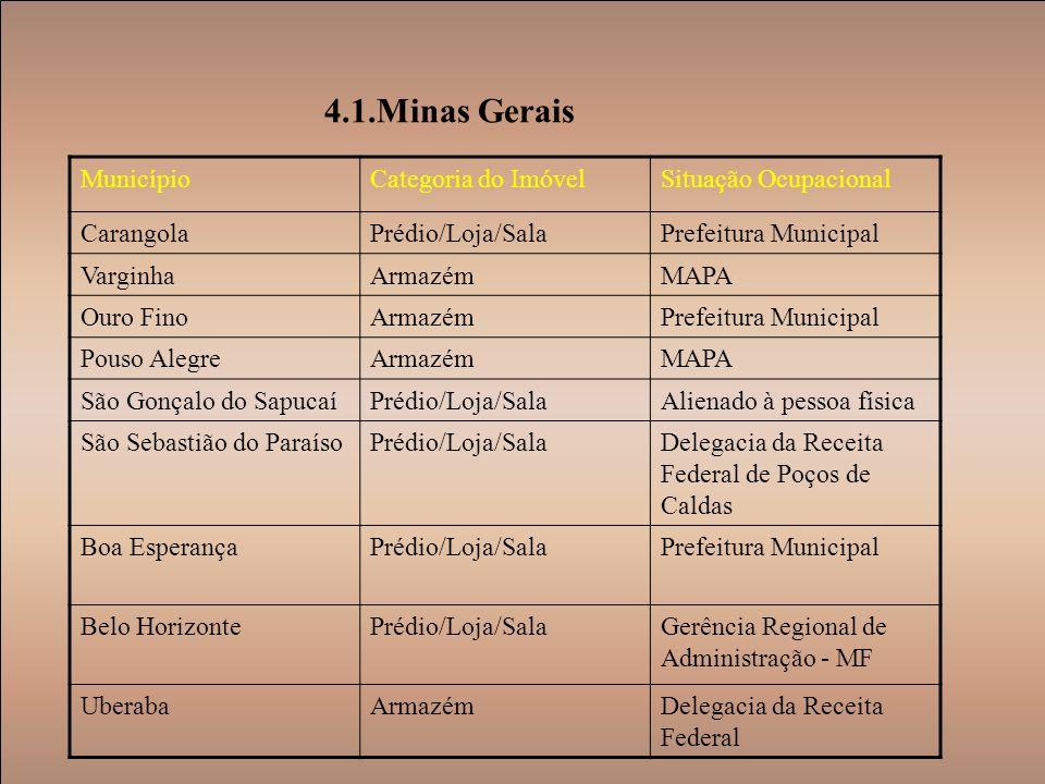 4.1.Minas Gerais Município Categoria do Imóvel Situação Ocupacional
