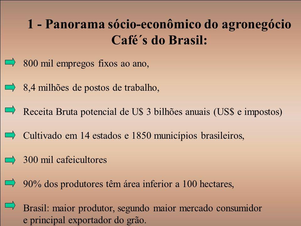 1 - Panorama sócio-econômico do agronegócio Café´s do Brasil: