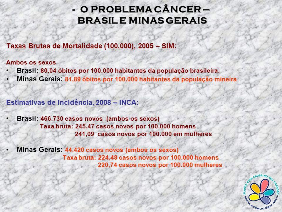 - O PROBLEMA CÂNCER – BRASIL E MINAS GERAIS