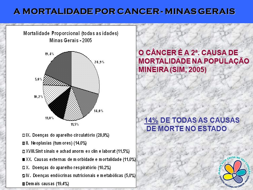 A MORTALIDADE POR CANCER - MINAS GERAIS