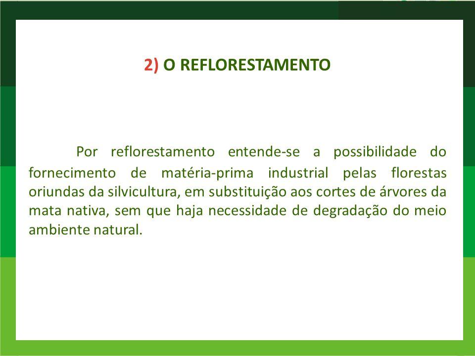 2) O REFLORESTAMENTO