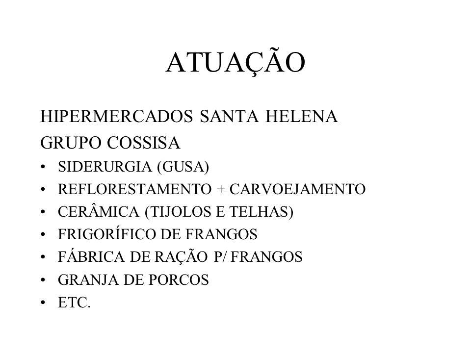 ATUAÇÃO HIPERMERCADOS SANTA HELENA GRUPO COSSISA SIDERURGIA (GUSA)