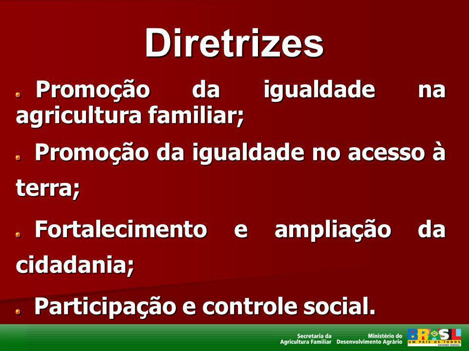 Diretrizes Promoção da igualdade na agricultura familiar;